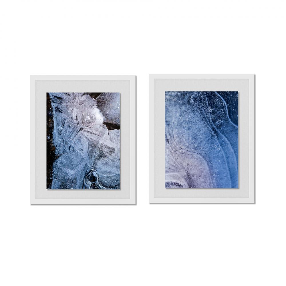 Mariposa Landing - Original Photographic Artwork by Alexandrea Tremaine